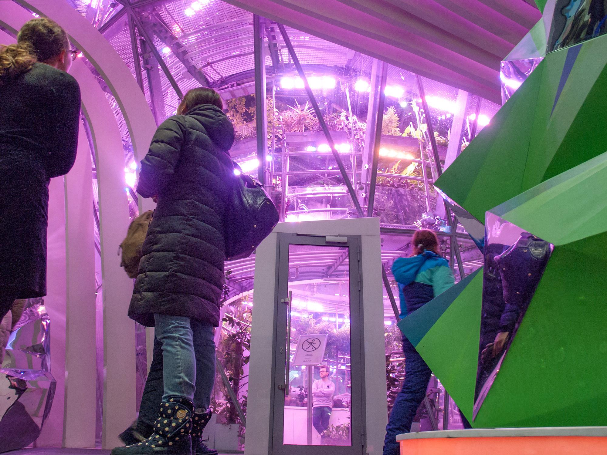 Флорариум в Зарядье - вид снаружи