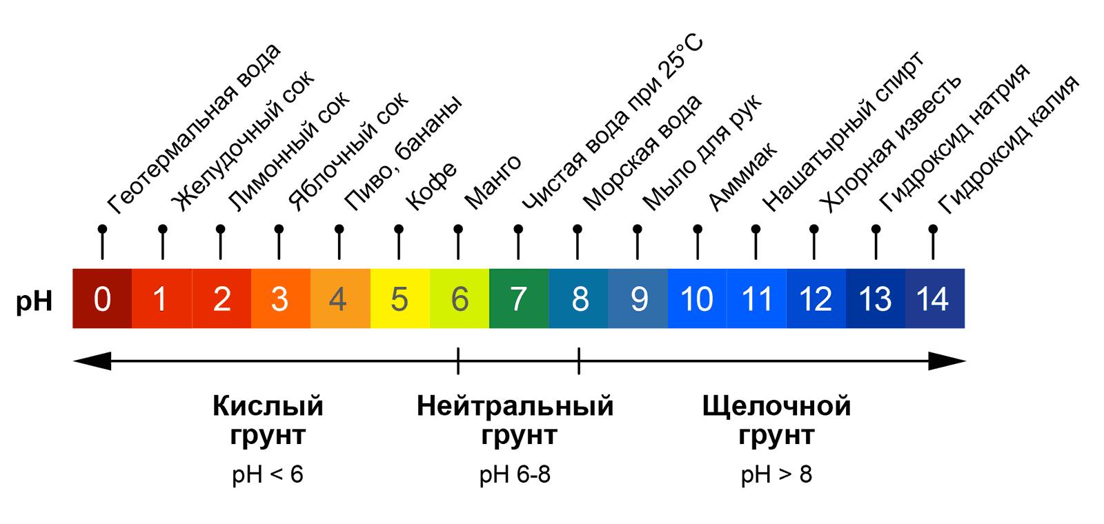 Кислотность грунта и pH уровень различных веществ