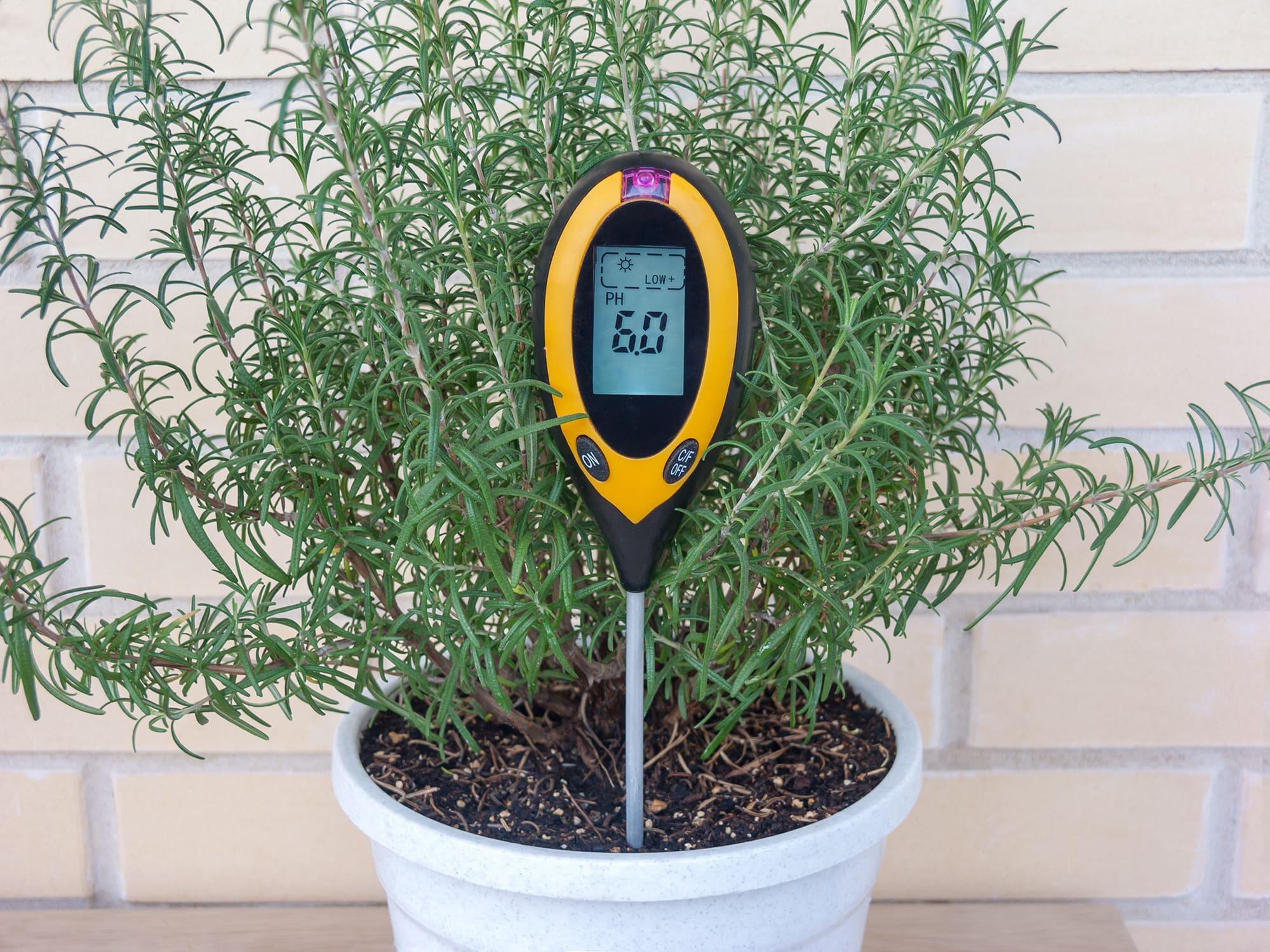 Прибор для измерения кислотности грунта в домашних условиях