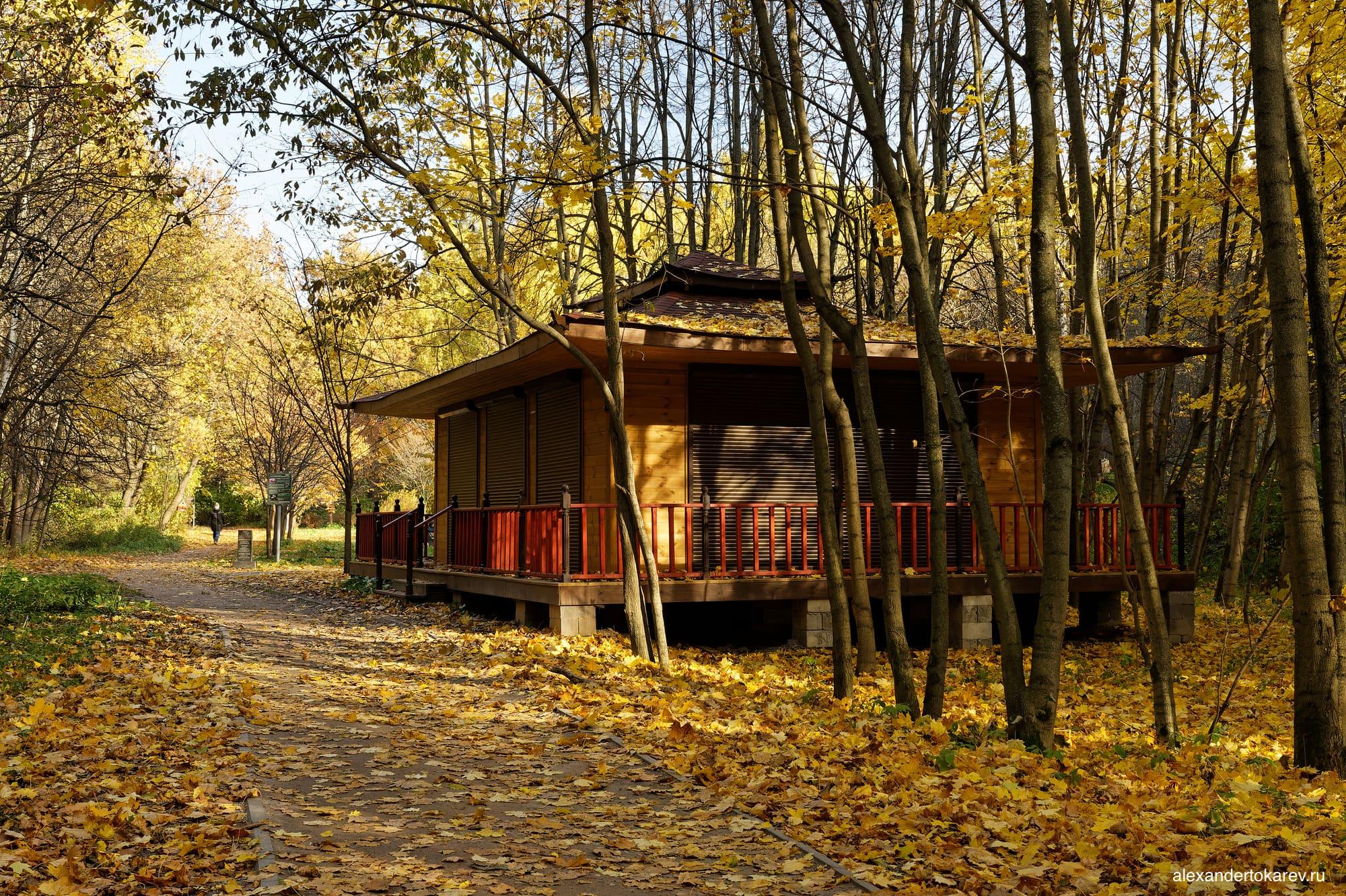 Домик у Рощи сакуры в Бирюлёвском дендропарке (2021)