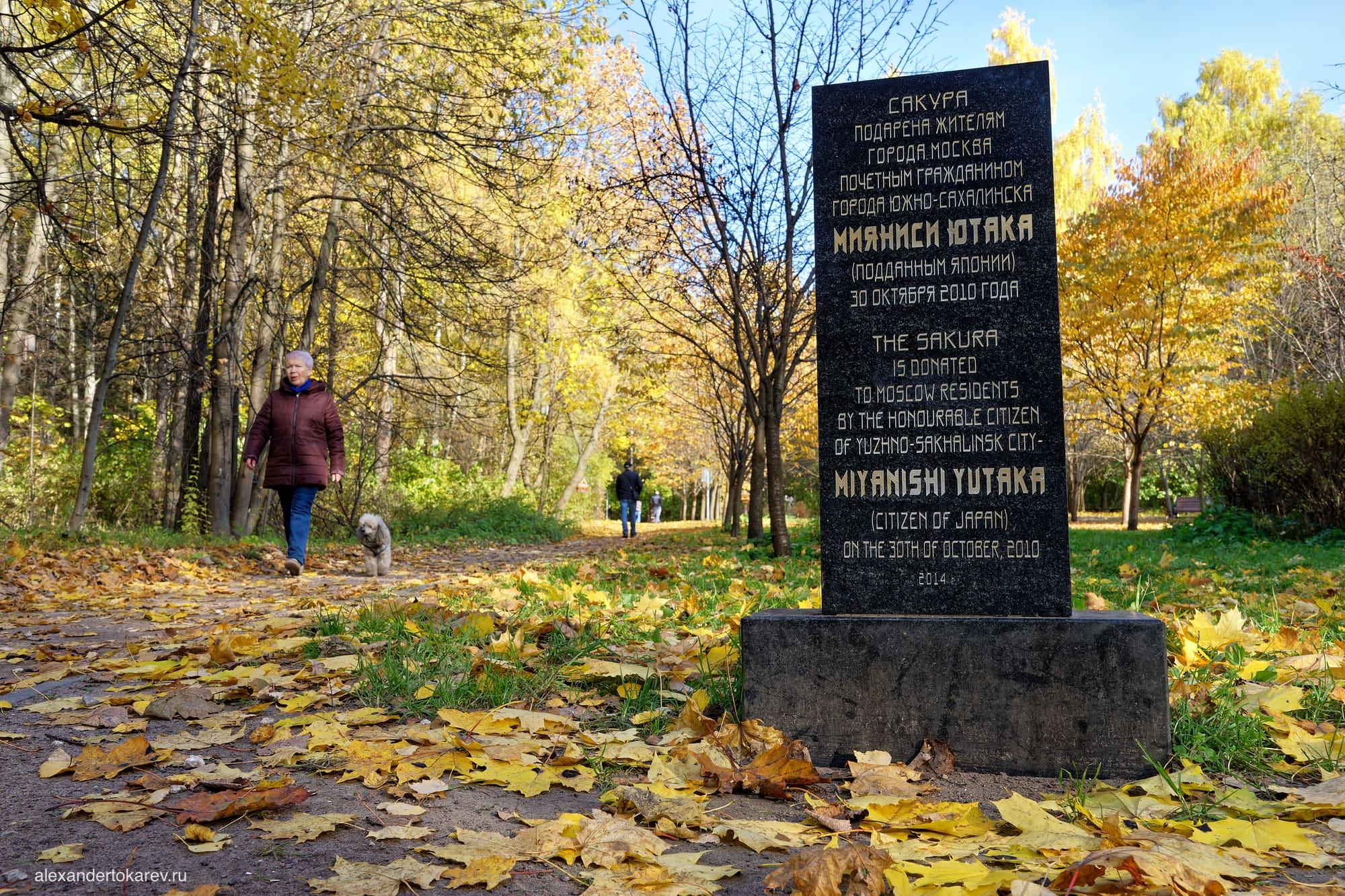 Монумент на входе в Рощу сакуры в Бирюлёвском дендропарке