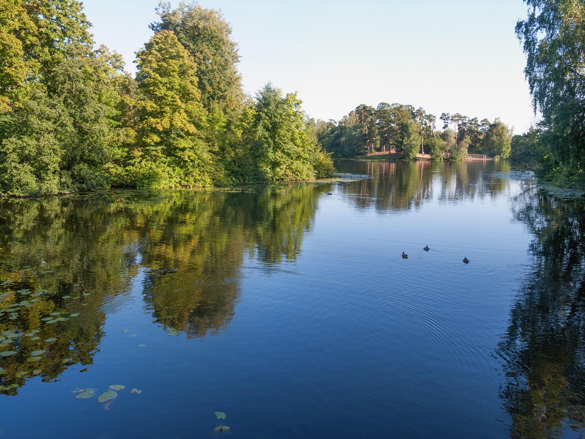 Озеро Бездонное в Серебряном Бору