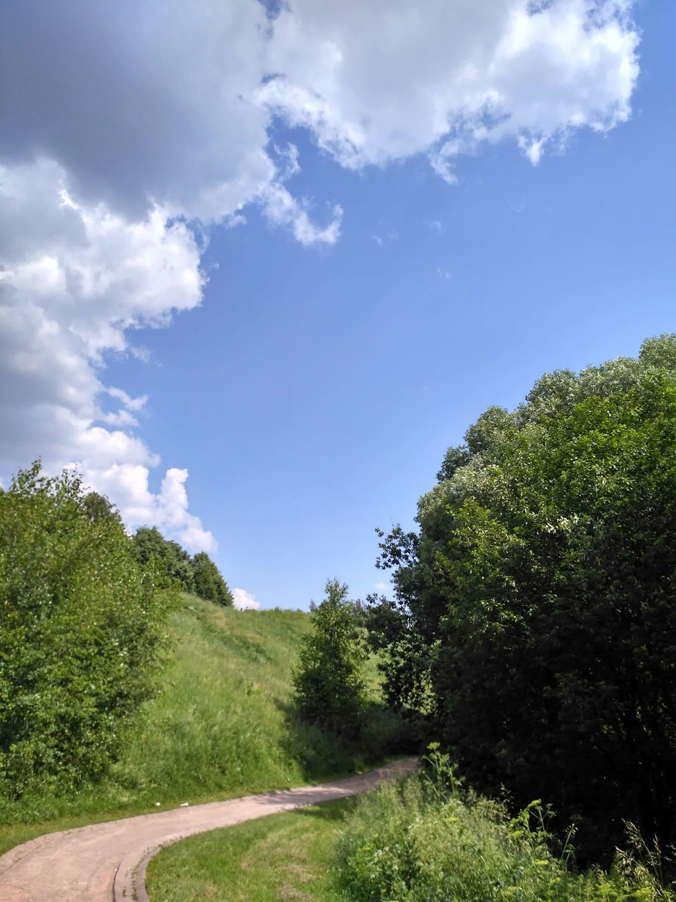 Дорога в лето