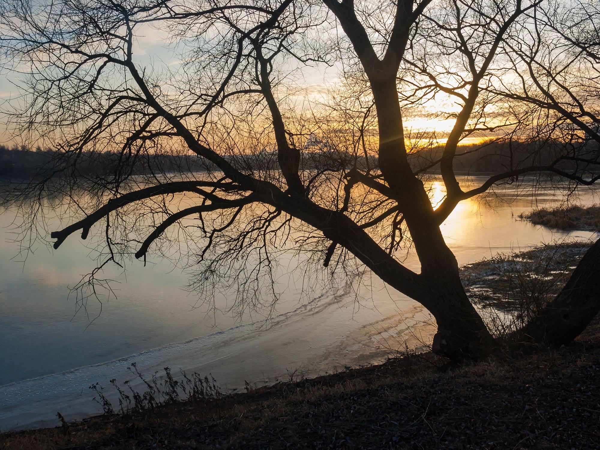 Нижний Царицынский пруд. Закат